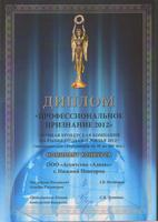 mini_diplom_prof._priznanie_2012_v_g._s.peterburg1